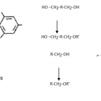 THE ASSESSMENT OF INVENTIVE STEP IN CHEMISTRY